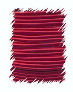 P.cord Shock Cord 4mm Imperial Red
